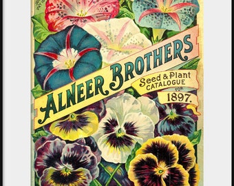 1898 Alneer Brothers Seed & Plant Catalog; NEW Giclee Art Print Poster; Vintage Garden Flowers; Pansy Morning Glory; Kitchen Wall Decor P143