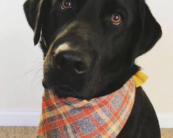 Personalized Flannel Grey Orange and Yellow Plaid Dog Bandana     Pet Gift by Three Spoiled Dogs