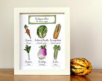 Food Illustration Print 'Winter Vegetables' French Modern kitchen art 8x10 - French food and vegetables Art for Kitchen Vegan Garden Nature