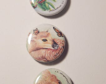 Into The Wild- Magnets- set of 3