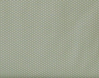 Tiny White Floral Design on Soft Green Background 100% Cotton Quilt Fabric, Evelyn by Whistler Studios for Windham Fabrics, WIF41988-2