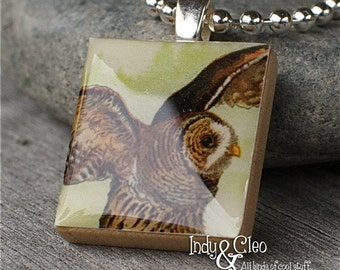 Barred Owl Scrabble Necklace, Handmade Scrabble Art Pendant, Wood Tile Pendant, Owl Charm, Tiny Jewelry, Owl Lover Gift, Bird Lover