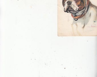 Very Fine Portrait A/S Mario Norfini Boston Terrier Dog Breed-Leather Collar-Unused Antique Postcard-Scarce