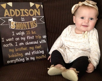 Baby's First Year Photo Prop Sign - Set of 12 Monthly Photo Prop Baby Girl