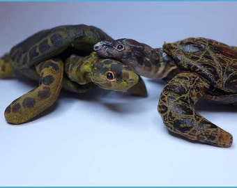 Schildkröten selber nähen ebook mit Schnittmuster by Furry Critters