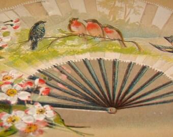 Lovely Vintage/Antique Embossed Bird Postcard