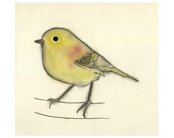 "Bird Art print.   Stefan - 4"" x 6"" yellow canary - 4 for 3 SALE"