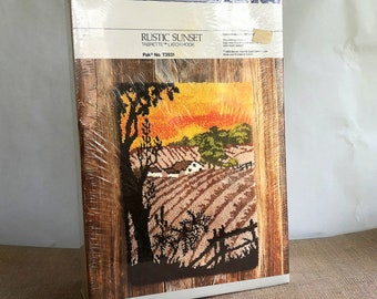 Vintage Latch Hook Rug Kit - New In Box, 27 x 39 in, Wall Hanging, Rustic Sunset, Bernat, Canvas and Yarn included, Rustic Modern