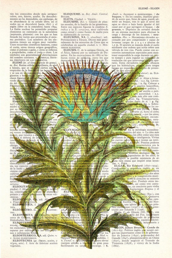 Vintage Book Print Dictionary or Encyclopedia Book print Cardoon flower Botanical studio print on Vintage BFL071
