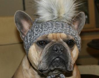 Crochet dog beanie