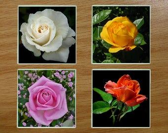Glass coasters, Coasters, Boxed coaster set,Floral,  (Set1)