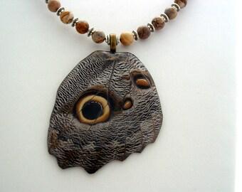 Real Butterfly Wings The Forest Giant Owl Caligo Eurilochus Butterfly Jasper Gemstone Jewelry