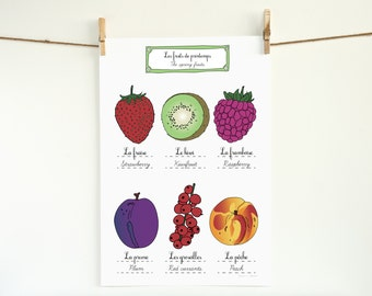 Spring Fruits Kitchen Art Poster - 13x19 Giclee art print of original illustration - French Retro Kitchen home decor botanical Gift for her