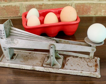 Egg scale by ACME EGGS, vintage