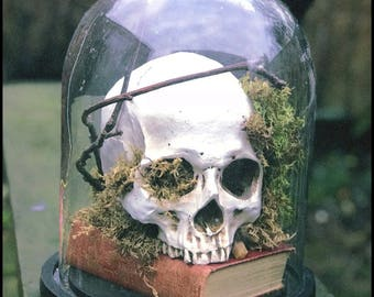 Hand-crafted bell jar dome with skull ornament. No two are the same