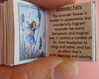 Dolls House 12th Scale The Book of the Flower Fairies download