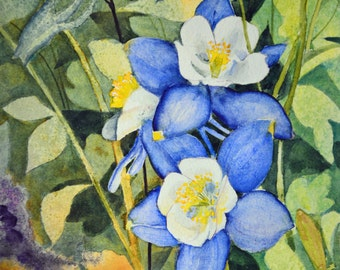 Wildflower painting original watercolor painting Columbine fine art painting watercolor painting original floral watercolor painting blue