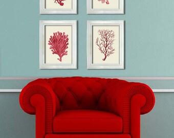 Coral Prints, Coral/Cream Set of 4 - Nautical Print Art Digital Illustration coral art Nautical Art Nautical Home Decor Nautical Wall Art