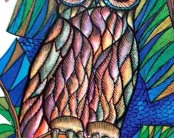 Owl Potcard. Illustrator by V. Davydov, poems by V. Kozhevnikov. Unused vintage postcard, 1974