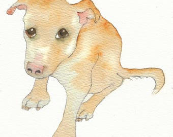 Illustrated children's book 'Floyd' about a rescue dog finding a new life PDF edition sold for blue cross pet rescue charity