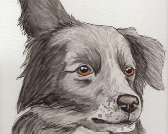 Original Border Collie Watercolor Painting Portrait (9x12): Gift for Dog Lover