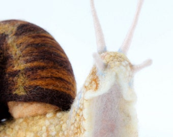 RESERVED for HEATHER! Needle Felted Land Snail, Large Snail Sculpture