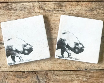 PIG natural stone platter / coaster tableware (various size options)