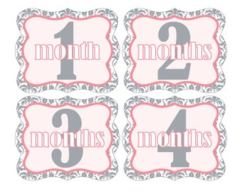 12 Monthly Baby Milestone Waterproof Glossy Stickers - Die Cut Shape - Just Born - Newborn - Weekly stickers available - Design M005-04
