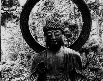 The Buddha- surreal photograph of buddha statue in the forest