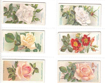 Complete Set of 50x Original Cigarette / Tobacco Cards - 'ROSES' - by Wills c1912