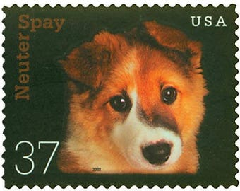 Four (4) unused US postage stamps - Kitten & puppy, spay neuter // 37 cent stamps // Face value 1.48