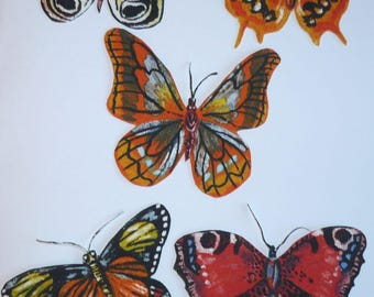 Set of magnets multicolored butterflies