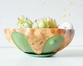 Mini succulent planter; Mini succulent pot; Natural cactus planter; Handmade cactus pot; Wood succulent pot; Gourd art; Valantines gifts