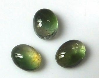 3 Pieces Lot 8X6 MM Oval Shape Natural Bi-Color Tourmaline Cabochon Cut Calibrated Untreated Gemstone Wholesale Lot Bi-Color Tourmaline