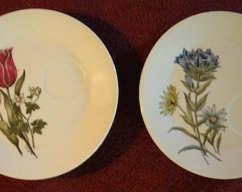 """Set of 6"""" Flower Garden"""" Decorated Porcelian 9 1/2"""" Luncheon Plates  Item # 454 Collectibles"""