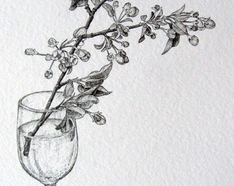 botanical drawing apple blossoms original black and white pen and ink