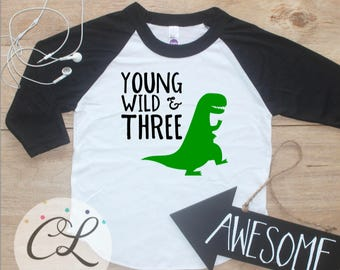 Young Wild Three Dinosaur Birthday Boy Shirt / Baby Boy Clothes 3 Year Old Outfit Third Birthday TShirt 3rd Birthday Party Outfit Raglan 251