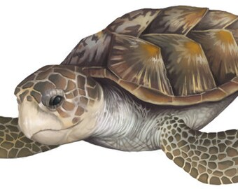 Sea Turtle Mural Wall Applique