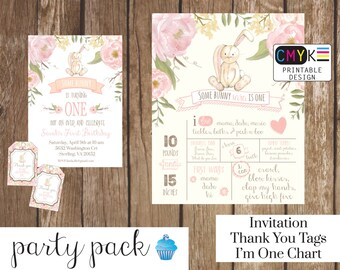 Bunny Birthday Invitation, Some Bunny is One, First Birthday Bunny Party Pack. Birthday Party Printable Decorations, Invite, Birthday Chart