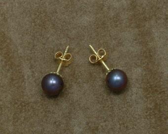 Black Akoya Pearl Earrings 7 mm