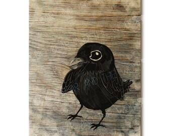 Wood art, baby raven, blackbird, wooden art print