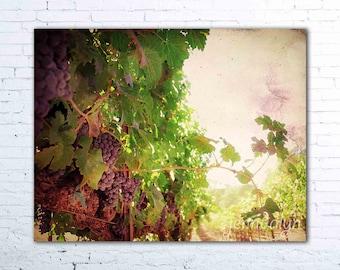 kitchen wine decor - vineyard vines print - wine country art - california wall art