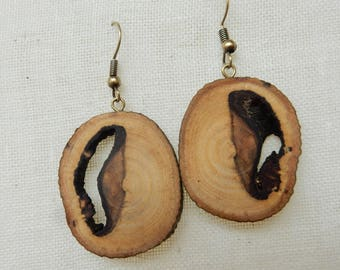 chestnut wooden dangle earrings - natural branch, raw, handmade