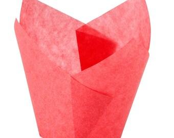 Red Tulip Cupcake Liners 250pk