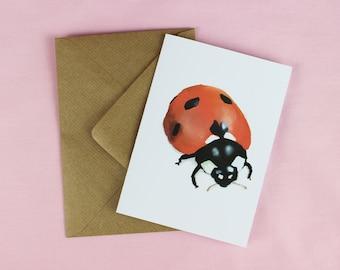 Ladybird card / Blank Card / Illustrated card / Ladybird / Wildlife Card / Wildlife Gift / Invitation / British Ladybird / Cute card.