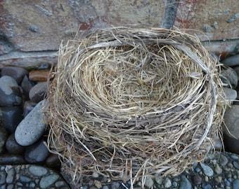 Birds Nest   Natural Birds Nest  Home Decor  Rustic Decor  Nest