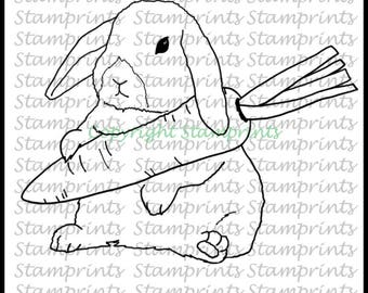 Bunny with Carrot (TLS-1803) Digital Stamp. Cardmaking.Scrapbooking.MixedMedia.