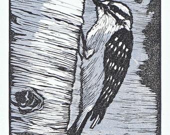 Downy Woodpecker block print