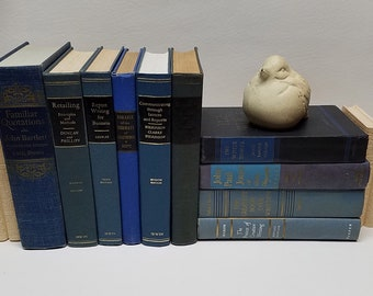 Lot of 10 HC Vintage BLUE Decorative Books 1945-1969