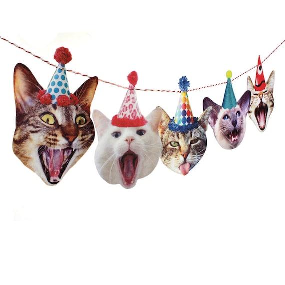 Cat Birthday Banner: Birthday Cats Garland Photo Reproductions On Felt Funny Cat